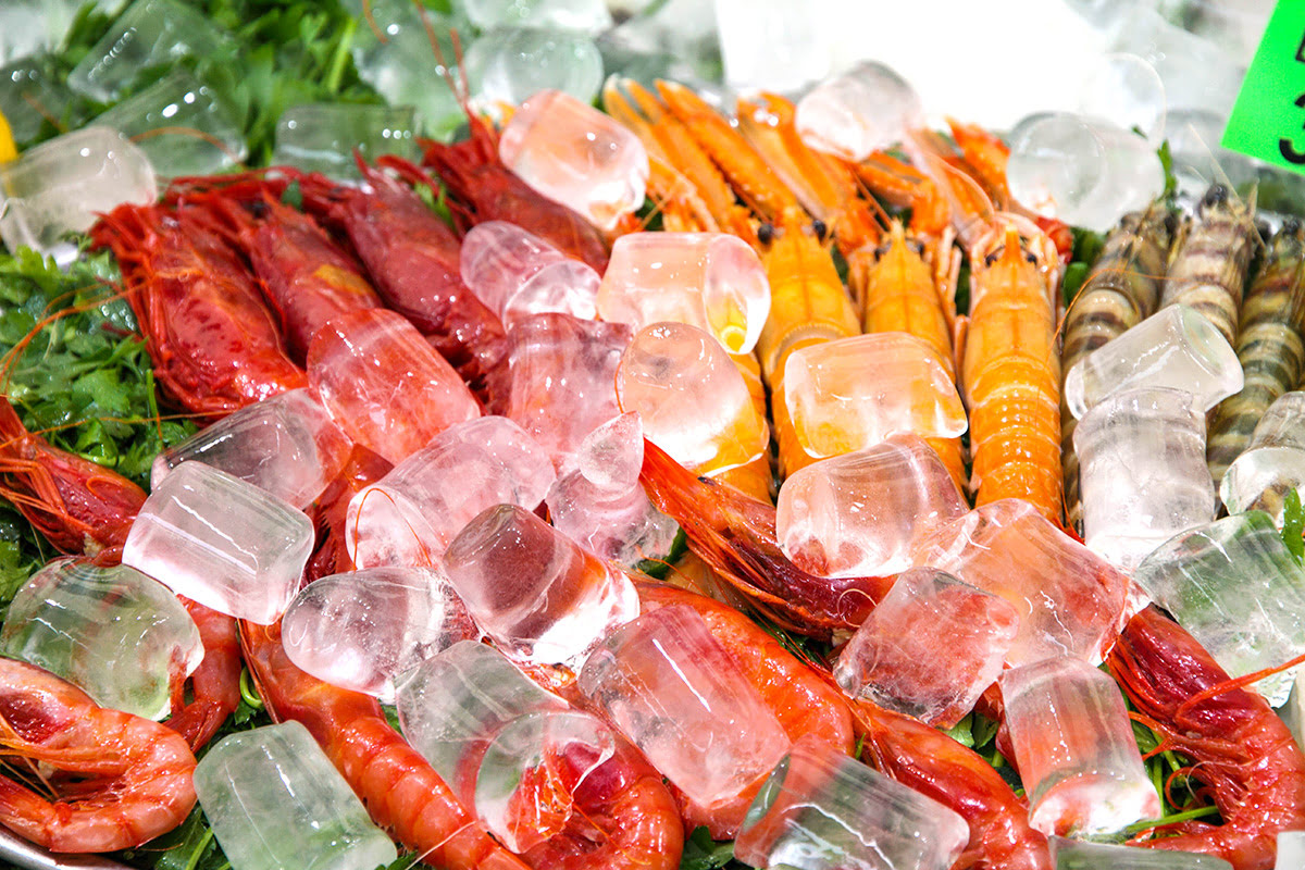 Things to do in Calpe-Spain-Lonja de Calp-Calpe Fish Market