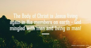 The Body of Christ is Jesus living again in His members on earth – God mingled with man and living in man!