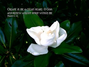 create in me a clean heart, O God, and renew a steadfast spirit / a right spirit within me