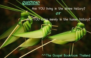 "God uses ""the locusts"" to carry out His purpose and fulfill His interest!"
