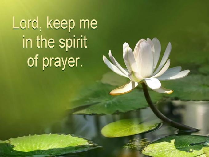 Image result for BE DEFINITE IN PRAYER