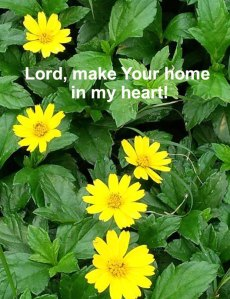 Allowing the Indwelling Christ to Make His Home in Our Heart and Feel at Home in us