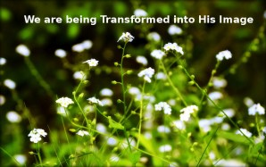 Being Transformed by Enjoying the Bountiful Spirit and By Conversing with the Lord