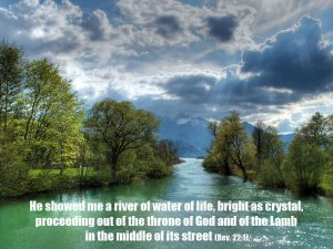 The Fellowship of Life is the Flow of Life with the Supply of Life in the Believers