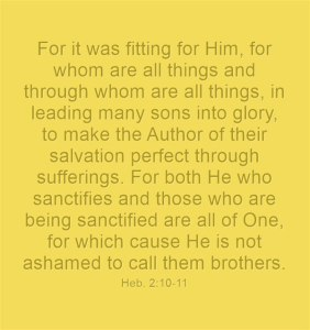 We're Human Seeds in the Process of being Sonized, Deified, Designated Sons of God