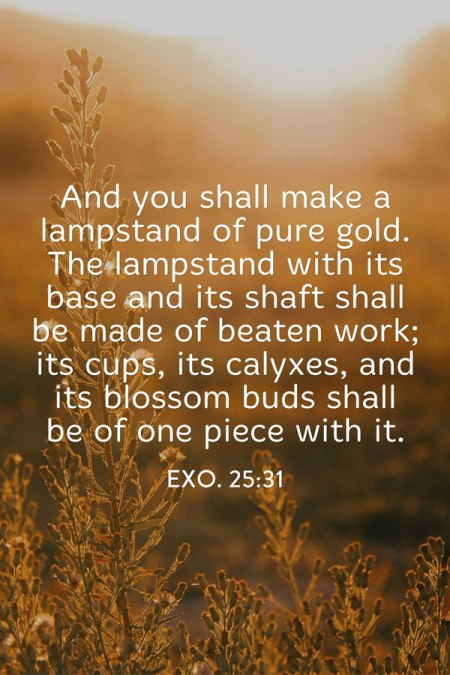 Exo. 25:31 And you shall make a lampstand of pure gold. The lampstand with its base and its shaft shall be made of beaten work; its cups, its calyxes, and its blossom buds shall be of one piece with it.