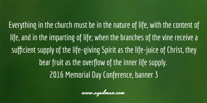 Everything in the church must be in the nature of life, with the content of life, and in the imparting of life; when the branches of the vine receive a sufficient supply of the life-giving Spirit as the life-juice of Christ, they bear fruit as the overflow of the inner life supply. 2016 Memorial Day Conference, banner 3