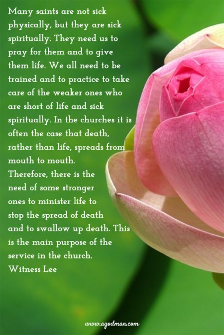 We have the privilege of giving life to the weaker ones in order to swallow up their death; this is a matter of life-imparting in the fellowship of the divine life. To be ones who can give life to others, we must abide in the divine life and walk, live, and have our being in the divine life. Witness Lee