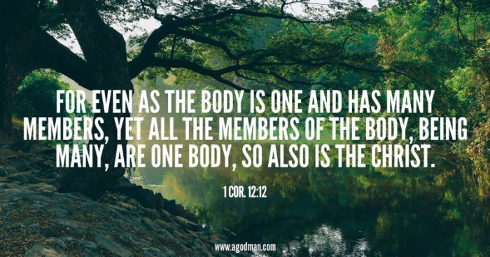 1 Cor. 12:12 For even as the body is one and has many members, yet all the members of the body, being many, are one body, so also is the Christ.