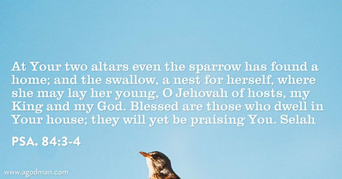 Psa. 84:3-4 At Your two altars even the sparrow has found a home; and the swallow, a nest for herself, where she may lay her young, O Jehovah of hosts, my King and my God. Blessed are those who dwell in Your house; they will yet be praising You. Selah