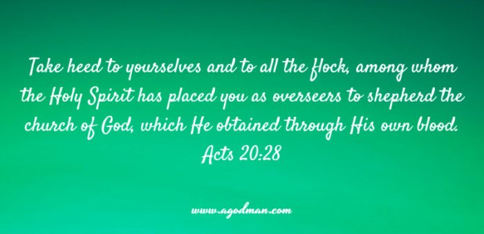 Acts 20:28 Take heed to yourselves and to all the flock, among whom the Holy Spirit has placed you as overseers to shepherd the church of God, which He obtained through His own blood.