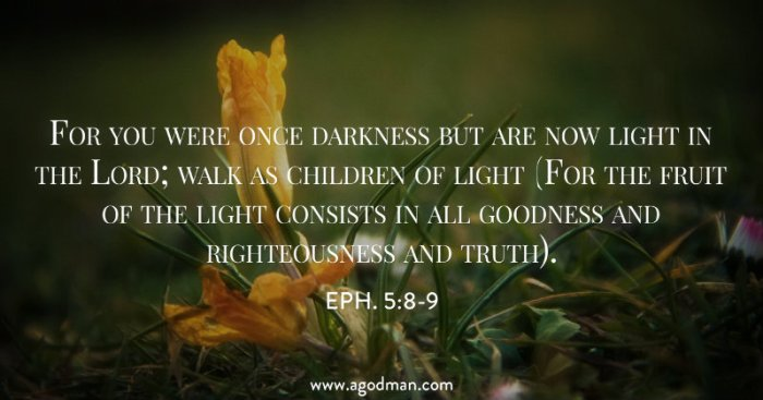 Eph. 5:8-9 For you were once darkness but are now light in the Lord; walk as children of light (For the fruit of the light consists in all goodness and righteousness and truth).
