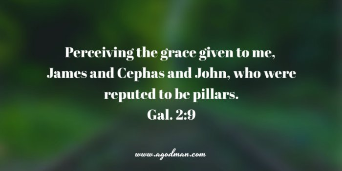 Galatians 2:9 Perceiving the grace given to me, James and Cephas and John, who were reputed to be pillars.
