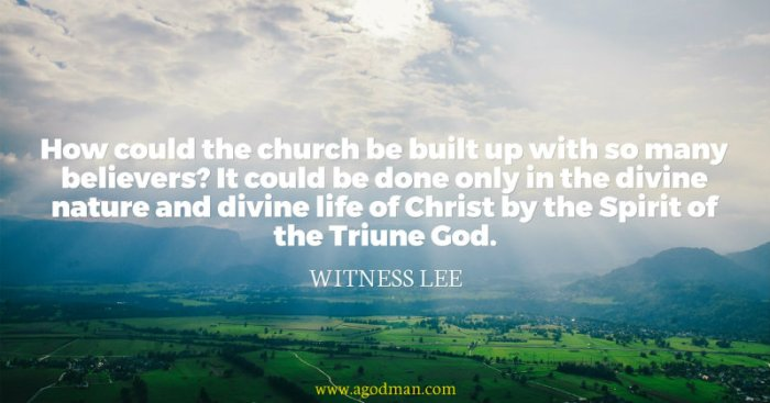 How could the church be built up with so many believers? It could be done only in the divine nature and divine life of Christ by the Spirit of the Triune God. Witness Lee