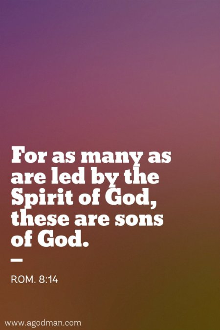 Rom. 8:14 For as many as are led by the Spirit of God, these are sons of God.