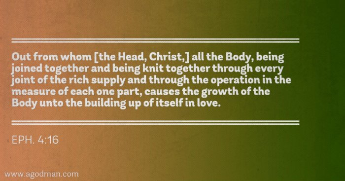 Eph. 4:16 Out from whom [the Head, Christ,] all the Body, being joined together and being knit together through every joint of the rich supply and through the operation in the measure of each one part, causes the growth of the Body unto the building up of itself in love.