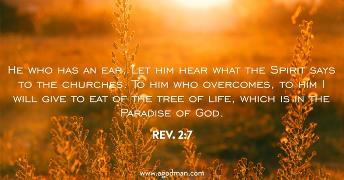 Rev. 2:7 He who has an ear, let him hear what the Spirit says to the churches. To him who overcomes, to him I will give to eat of the tree of life, which is in the Paradise of God.