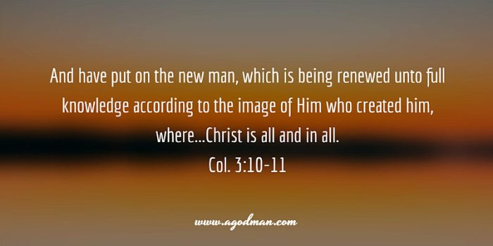 Col. 3:10-11 And have put on the new man, which is being renewed unto full knowledge according to the image of Him who created him, where...Christ is all and in all.