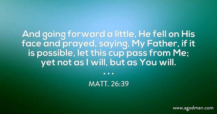 Matt. 26:39 And going forward a little, He fell on His face and prayed, saying, My Father, if it is possible, let this cup pass from Me; yet not as I will, but as You will.