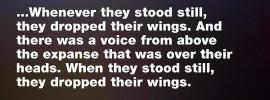 Ezek. 1:24-25 ...Whenever they stood still, they dropped their wings. And there was a voice from above the expanse that was over their heads. When they stood still, they dropped their wings.