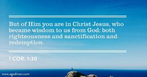 Christ Satisfied God's Requirements: now He's our Righteousness, Holiness, and Glory