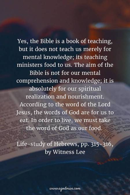 50 Bible Verses about the Word of God