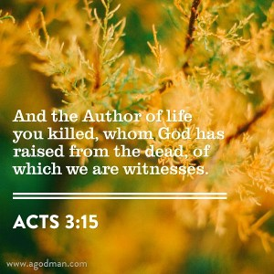 We are Witnesses of the Resurrected Christ in our Word, our Life, and our Action