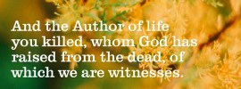 Acts 3:15 And the Author of life you killed, whom God has raised from the dead, of which we are witnesses.