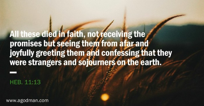 Heb. 11:13 All these died in faith, not receiving the promises but seeing them from afar and joyfully greeting them and confessing that they were strangers and sojourners on the earth.