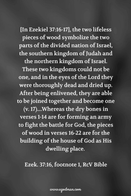 [In Ezekiel 37:16-17], the two lifeless pieces of wood symbolize the two parts of the divided nation of Israel, the southern kingdom of Judah and the northern kingdom of Israel. These two kingdoms could not be one, and in the eyes of the Lord they were thoroughly dead and dried up. After being enlivened, they are able to be joined together and become one (v. 17)....Whereas the dry bones in verses 1-14 are for forming an army to fight the battle for God, the pieces of wood in verses 16-22 are for the building of the house of God as His dwelling place. Ezek. 37:16, footnote 1, RcV Bible