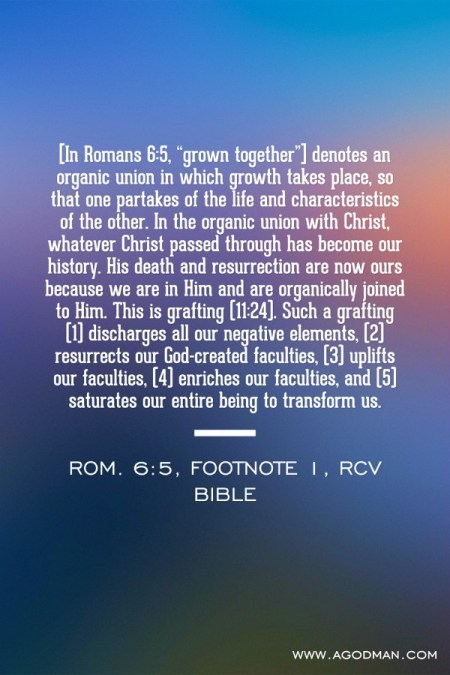 "[In Romans 6:5, ""grown together""] denotes an organic union in which growth takes place, so that one partakes of the life and characteristics of the other. In the organic union with Christ, whatever Christ passed through has become our history. His death and resurrection are now ours because we are in Him and are organically joined to Him. This is grafting (11:24). Such a grafting (1) discharges all our negative elements, (2) resurrects our God-created faculties, (3) uplifts our faculties, (4) enriches our faculties, and (5) saturates our entire being to transform us. Rom. 6:5, footnote 1, RcV Bible"