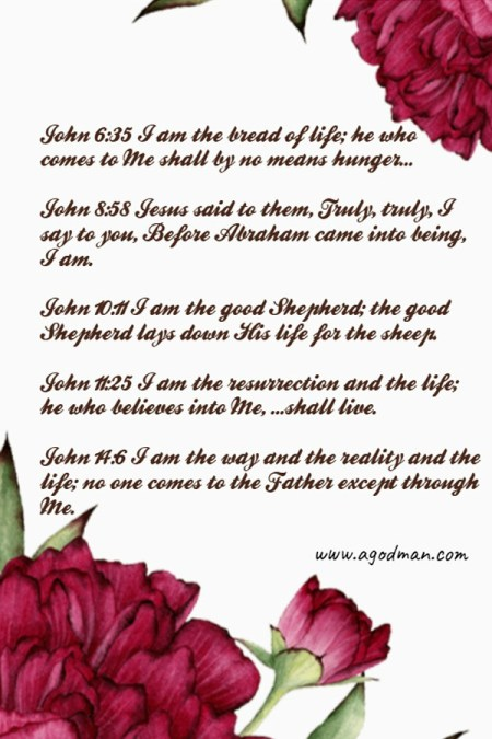 John 6:35 Jesus said to them, I am the bread of life; he who comes to Me shall by no means hunger, and he who believes into Me shall by no means ever thirst. John 8:58 Jesus said to them, Truly, truly, I say to you, Before Abraham came into being, I am. John 9:5 While I am in the world, I am the light of the world. John 10:11 I am the good Shepherd; the good Shepherd lays down His life for the sheep. John 11:25 Jesus said to her, I am the resurrection and the life; he who believes into Me, even if he should die, shall live. John 14:6 Jesus said to him, I am the way and the reality and the life; no one comes to the Father except through Me.
