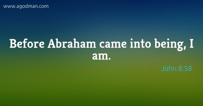 John 8:58 Before Abraham came into being, I am.
