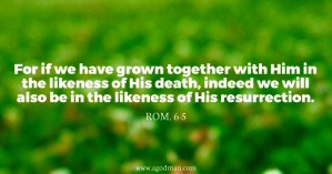 Being Joined together in the Way of Life through Grafting for the Building of God