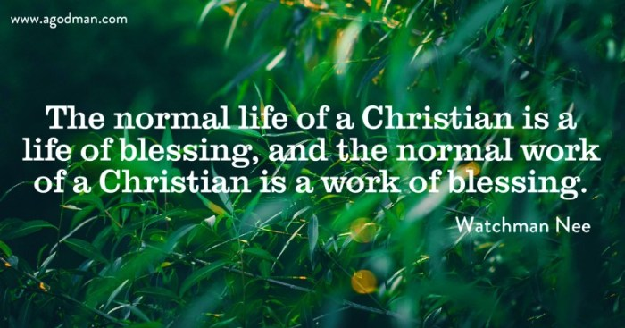 The normal life of a Christian is a life of blessing, and the normal work of a Christian is a work of blessing.