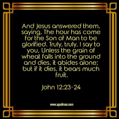 John 12:23-24 And Jesus answered them, saying, The hour has come for the Son of Man to be glorified. Truly, truly, I say to you, Unless the grain of wheat falls into the ground and dies, it abides alone; but if it dies, it bears much fruit.