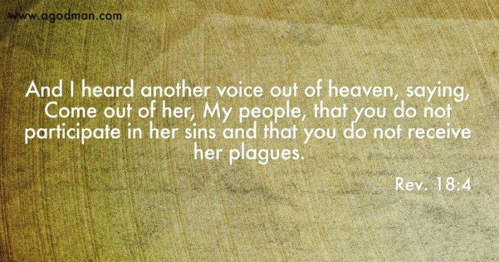 Rev. 18:4 And I heard another voice out of heaven, saying, Come out of her, My people, that you do not participate in her sins and that you do not receive her plagues.