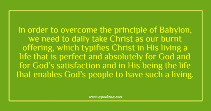 In order to overcome the principle of Babylon, we need to daily take Christ as our burnt offering, which typifies Christ in His living a life that is perfect and absolutely for God and for God's satisfaction and in His being the life that enables God's people to have such a living.