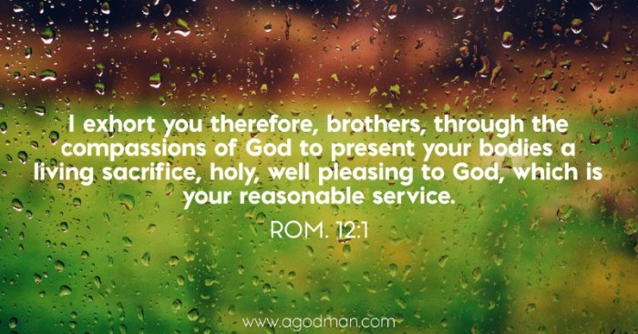 Rom. 12:1 I exhort you therefore, brothers, through the compassions of God to present your bodies a living sacrifice, holy, well pleasing to God, which is your reasonable service.
