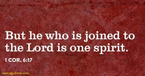 Fellowship means we are One Spirit with the Lord: we Enjoy Him and Keep the Oneness