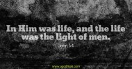 John 1:4 In Him was life, and the life was the light of men.