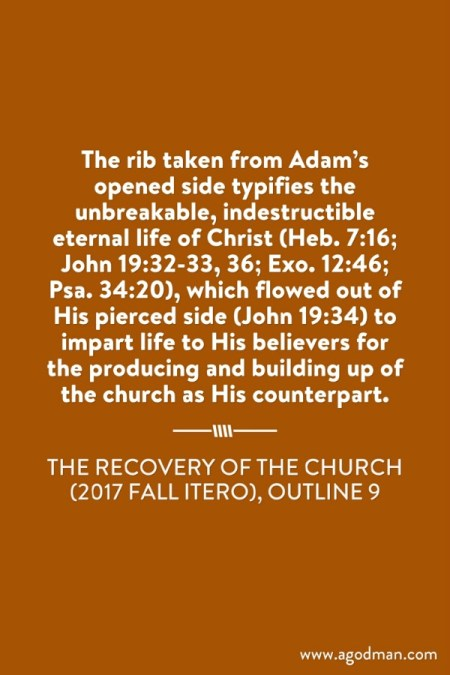 The rib taken from Adam's opened side typifies the unbreakable, indestructible eternal life of Christ (Heb. 7:16; John 19:32-33, 36; Exo. 12:46; Psa. 34:20), which flowed out of His pierced side (John 19:34) to impart life to His believers for the producing and building up of the church as His counterpart. The Recovery of the Church (2017 fall ITERO), outline 9