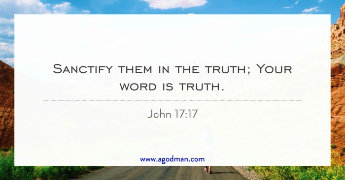 your word is truth john 17 17 by rev fr cyprian okoronkwo ebook