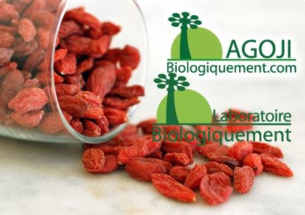 goji-super-fruit-baies-de-goji-himalaya-goji-berries-58