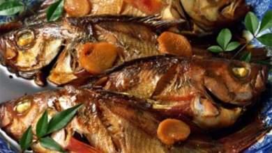 Photo of دراسة: الأسماك أيضا تصاب بسرطان الجلد.. يشبه سرطان الجلد عند البشر