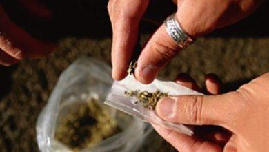 Photo of إيقاف شبكة دولية للاتجار بالمخدرات