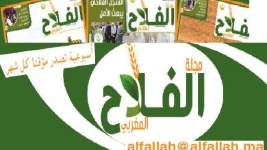 Photo of الصحافي محمود أحياتي يدخل غمار الصحافة المتخصصة