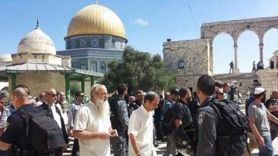 Photo of بدعم من قوات الإحتلال: مستوطنون يقتحمون مجددا ساحات المسجد الأقصى