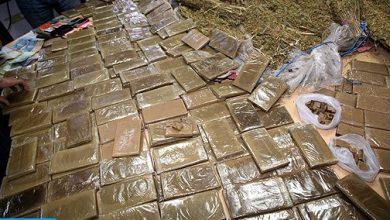Photo of الناظور: إجهاض عملية كبيرة لتهريب المخدرات على الصعيد الدولي، وحجز ما مجموعه 12 طن و800 كلغ من مخدر الشيرا
