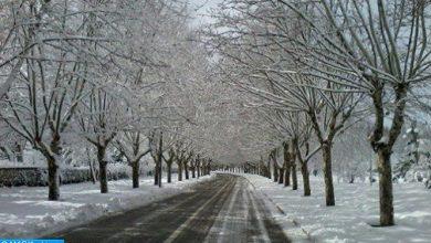 Photo of تساقطات ثلجية وطقس بارد من المستوى البرتقالي من الجمعة الى الأحد بعدد من أقاليم المملكة